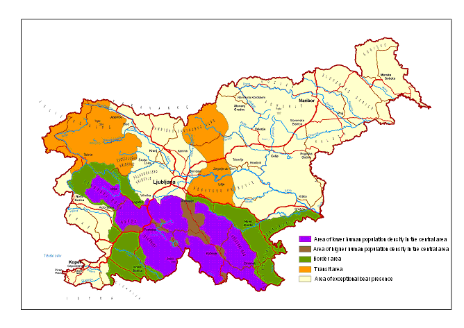 Brown bear areas in Slovenia